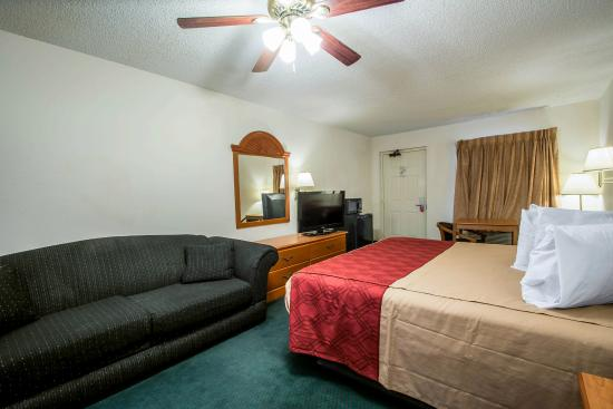 Econo Lodge Alachua: Guest Room