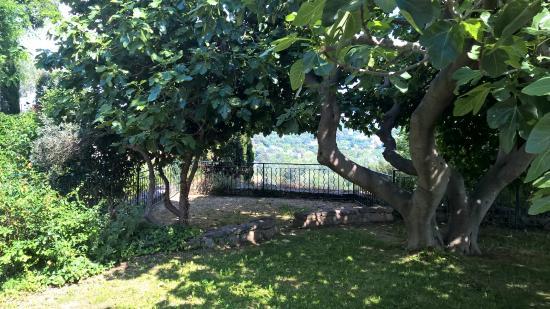 Petit jardin public bild von miramas le vieux miramas tripadvisor - Petit jardin public nice ...