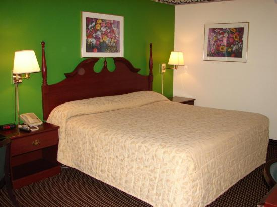 Columbus Inn & Suites: Guest room