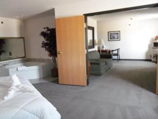Edmore, MI: Suite