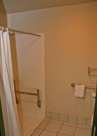 Oak Tree Inn - Livonia West: Guest room