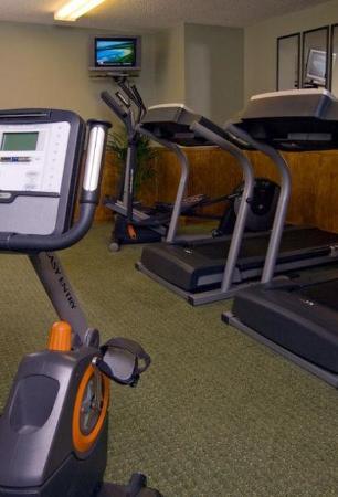 Jacksonville Plaza Hotel & Suites: Health club