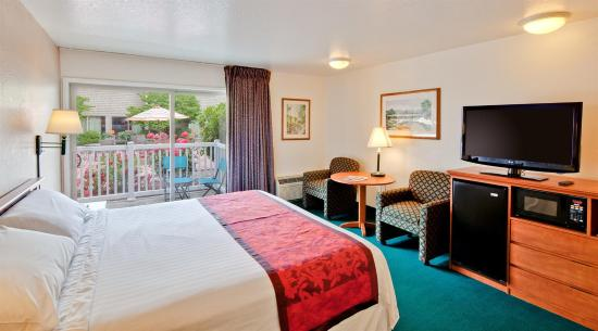 Windmill Inn of Roseburg: Guest room