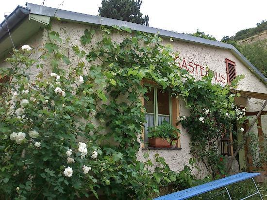 Steinmeister Gastehaus