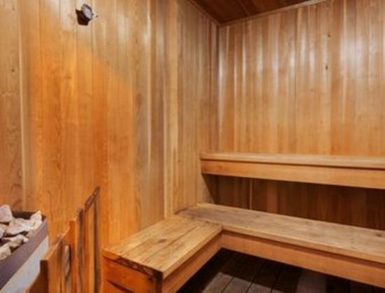 Thriftlodge Cochrane South: Sauna