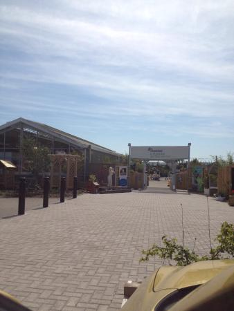 Draycott, UK: Great garden centre