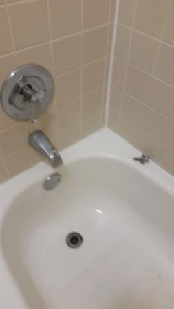 Cottonwood Suites Savannah Hotel U0026 Conference Center: Nasty Bathtub, Drain  Plug Not Attached,