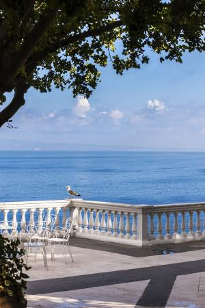 Sant'Agnello, Italia: Terrace