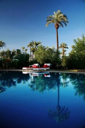 Murano Resort Marrakech: Swimming Pool