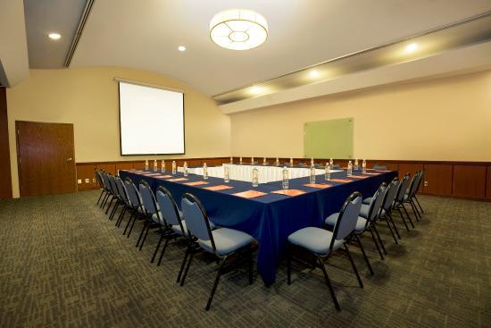 Fiesta Inn Reynosa: Meeting Room