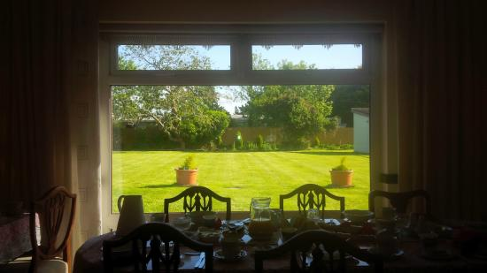Pebble Mill B & B: View from Dining room, along with a horse