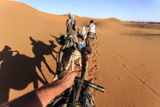 L'Auberge Oasis: Sur nos montures