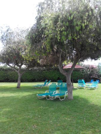 Chrysland Hotel: газон