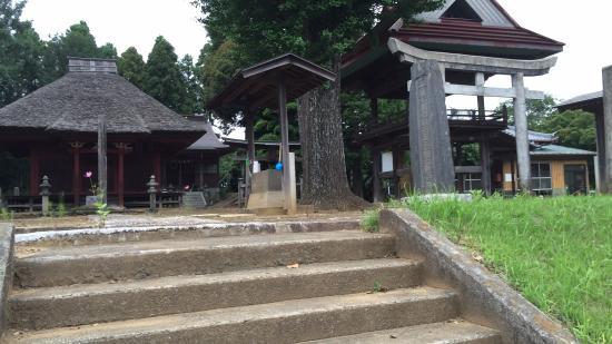 Eifukuji Temple Yakushido