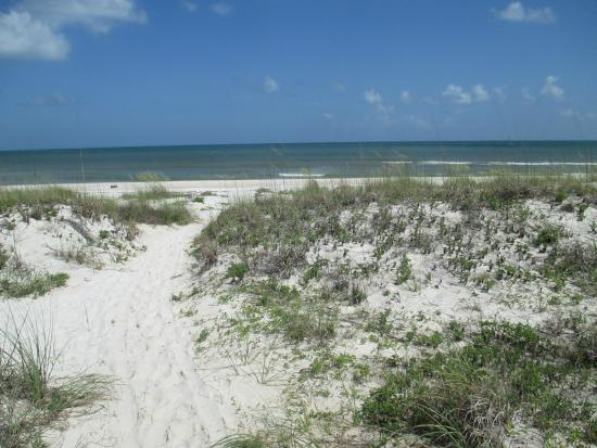 Saint George Island State Park : A view of the quiet sands.