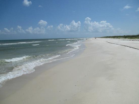Saint George Island State Park: A view of the beach side.