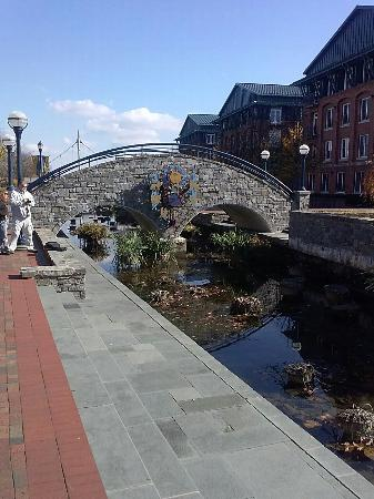 Frederick, MD: Downtown