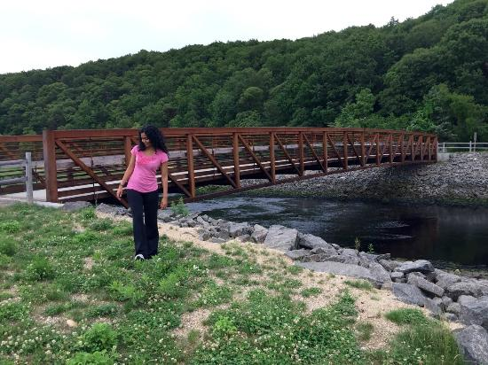 Picnic Parks In Long Island