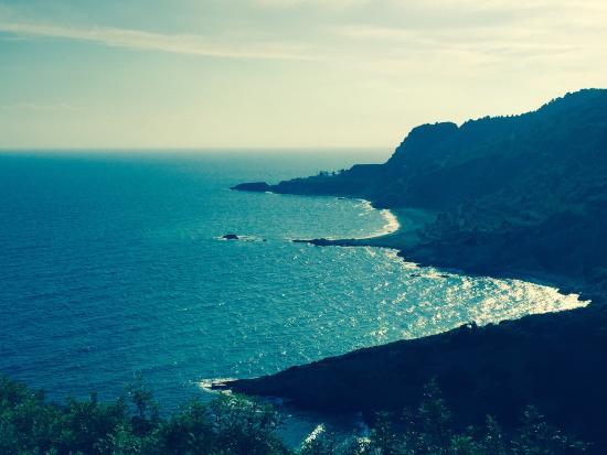 Tenuta delle Ripalte: Spiaggia di Remaiolo; Vista dell'isola di Montecristo dalla Tenuta.