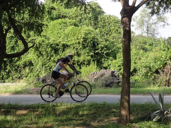 Bike the Coast: Scenic routes