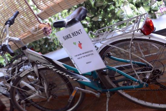 Gianni House: Explore by Bike