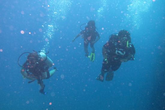 Thai Scuba Divers
