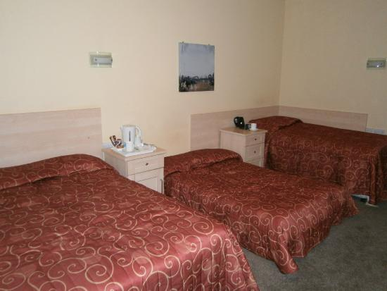 Victoria Park Lodge: Room 26. Note the low bed-settee.
