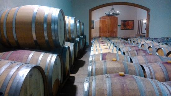Lo Abarca, Χιλή: sala de barricas
