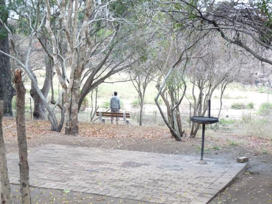 Biyamiti Bushveld Camp : Blick von der Terasse