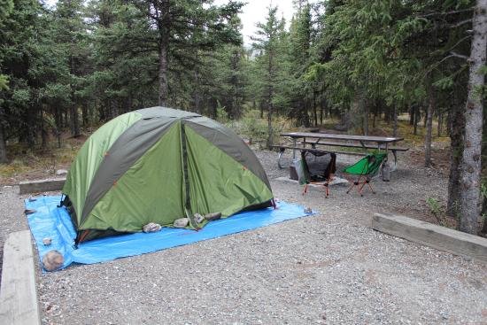 Savage River: Our campsite!