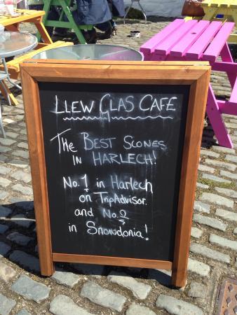 Menu - Llew Glas Cafe Photo