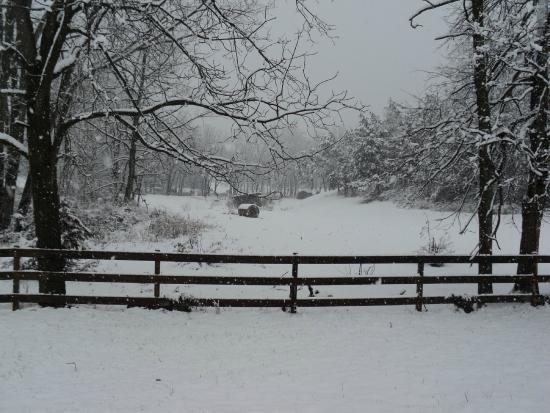 New Market, VA: first snow in November,2014
