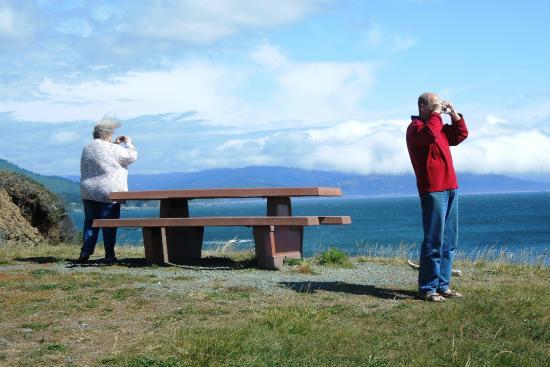 Chetco Point Park: view south towards California