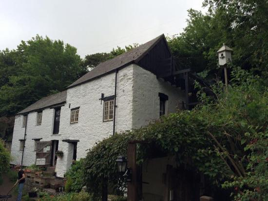 Hele Corn Mill and Tea Room: The Old Mill
