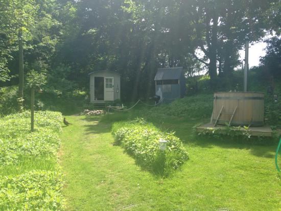 Yorkshire, UK: A sunny day at the shepherd hut