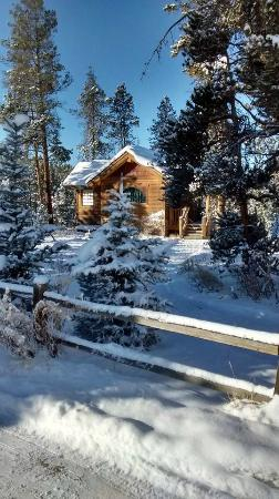 Wild Horse Inn: The Meadow Creek Cabin in Winter