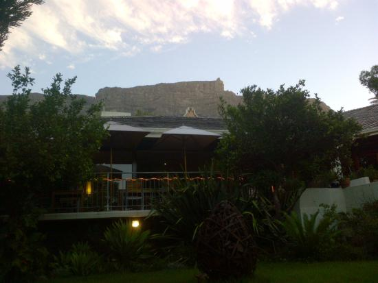 Lezard Bleu: La vue sur Table Mountain et l'arrivée du Cable Car