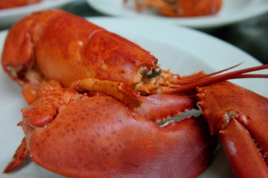 Crowther's Restaurant: Sakonnet Lobster