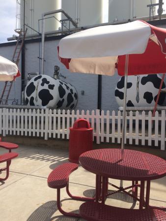 Oberweis Dairy: Cream Storage For Making Ice Cream!