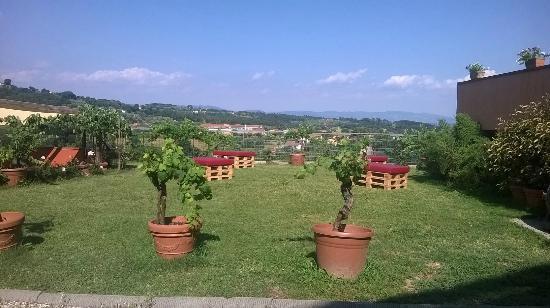 Buonamico Tenuta : Outside, terrase