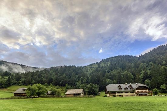 Govc Vrsnik Tourist Farm: Govc-Vršnik farm