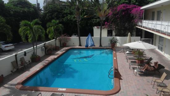 Ocean Lodge: Large older pool