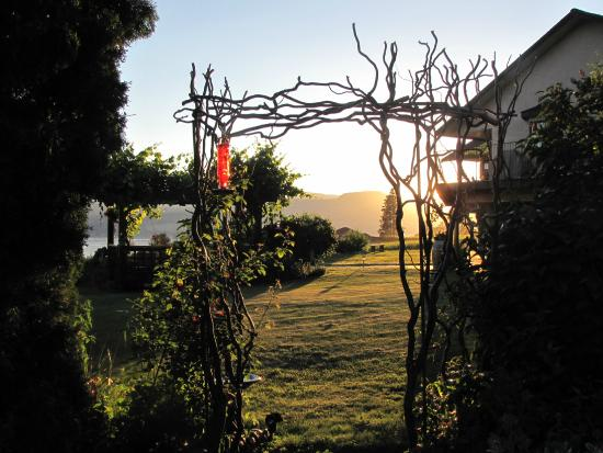 Sutherland Blueberry Bed & Breakfast: trellis sunset...can you see the hummingbird?