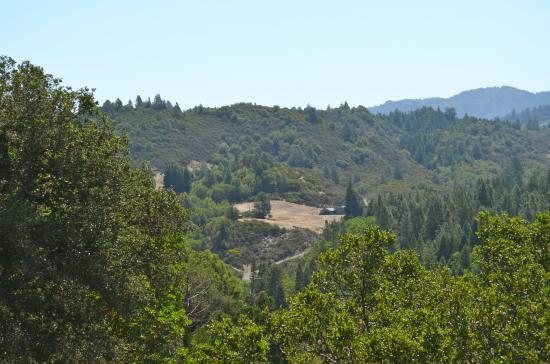 "Mountain Home Ranch: A view from ""lookout point"" -- beautiful now and great at sunset.  Echo's, too!"