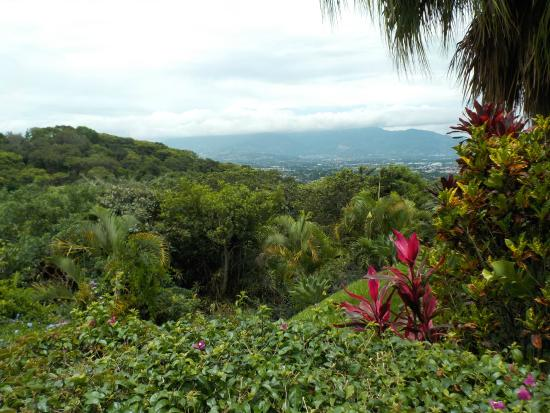 Alajuela, Costa Rica: view from room