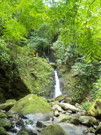Alajuela, Costa Rica: waterfall on grounds
