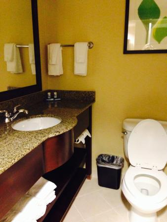 Fairfield Inn & Suites Valdosta: bathroom