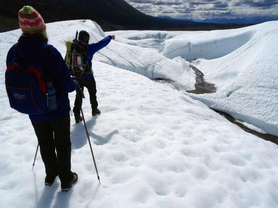 Wild Alpine - Day Tours: Our guide Logan leads the way on the Root Glacier