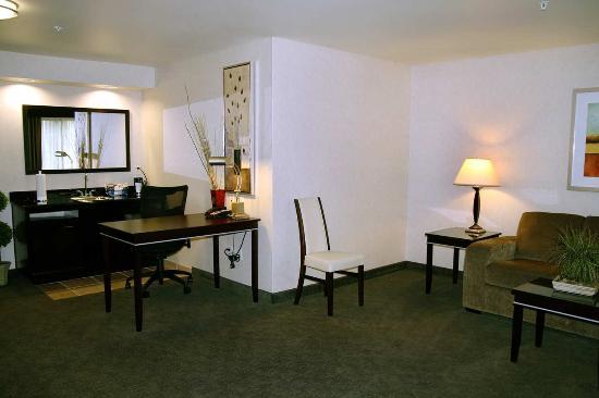 Hampton Inn and Suites Roseville: King Studio Suite