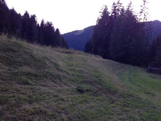 Agriturismo Oberstallerhof